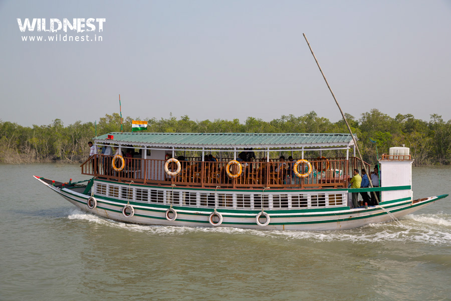 Boat Ride at Sundarbans National Park